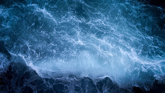 Want To Own The Ocean? Now You Can: Moen Launches NFT Auction To Help Combat Ocean Plastic Pollution