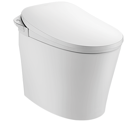 Browse Walden Smart Toilet with Silver Finish