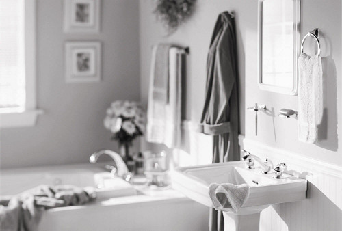 Moen Pro Bathroom Accessories