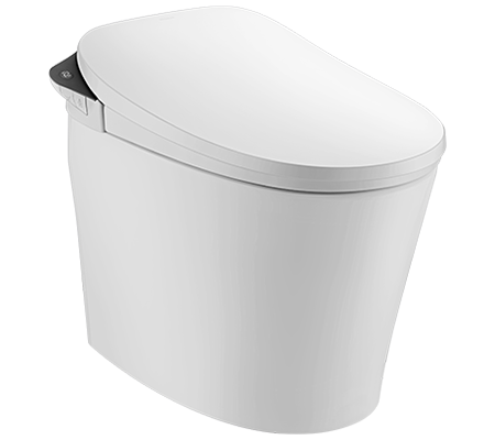 Browse Walden Smart Toilet with Black Finish