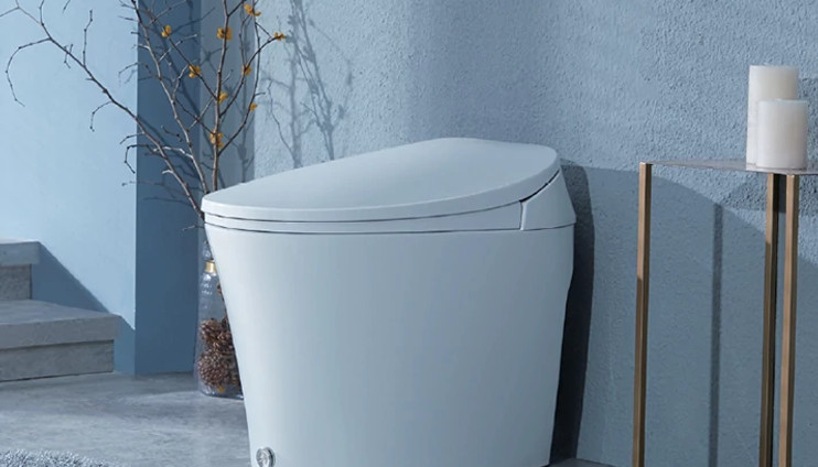 Walden Smart Toilet