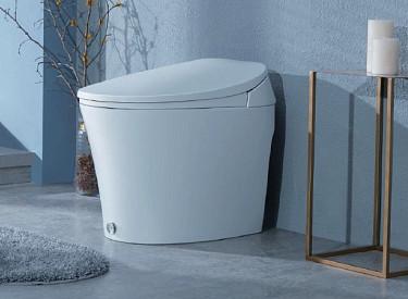 Walden Smart Toilet