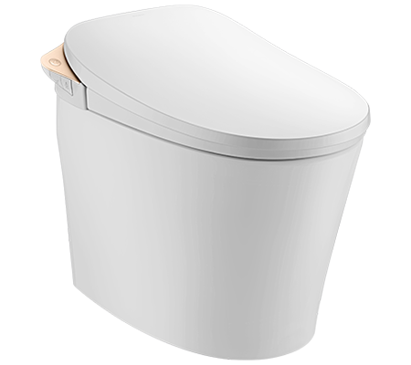 Browse Walden Smart Toilet with Golden Finish